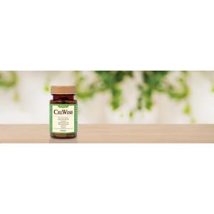 CelWise Antioxidant Broad Spectrum Anti Aging Increase Immune Vitamin C Multi Vitamin