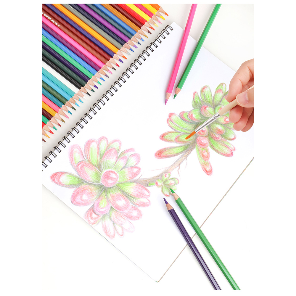 M&G 12 Colors 2B Color Pencil Water Soluble Color Oily Color Lead Painting