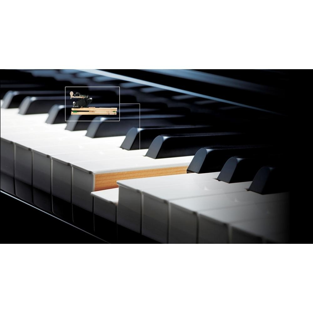 88 Key Casio AP-700 BK Celviano Piano Bench 256 Note Polyphony 17 Track / 5 Song Recorder 30W x 30W Amplifier